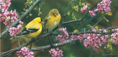 Gleam of Gold - Goldfinches