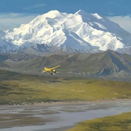 Denali Summer - William Phillips