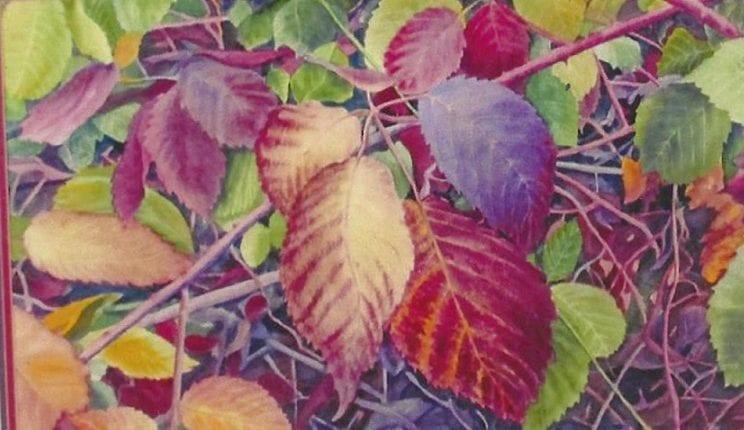 Autumn Leaf Fantasy Randy Klassen - Copy