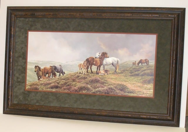 Dartmoor Ponies - Bonnie Marris
