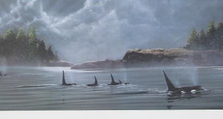 On the Move - Orcas - John Petrella