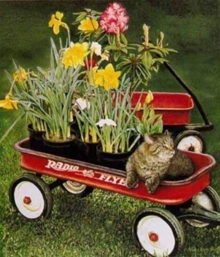Spring Fever - Sueellen Ross