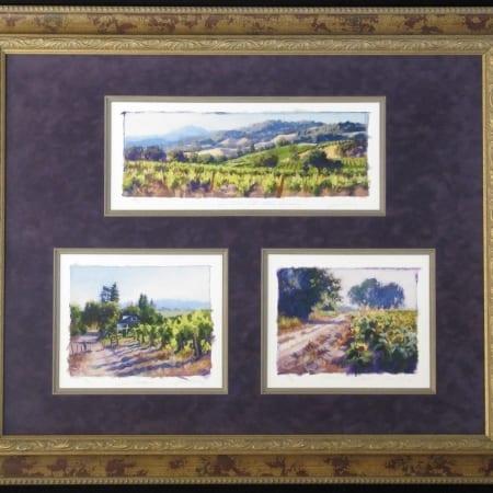 Studies of...Wine Country California Framed