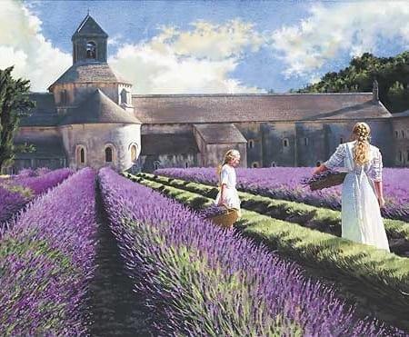 Lavender - Heide Presse