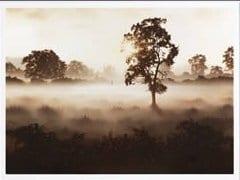 Morning Mist - John Waterhouse