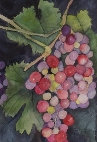 Vine Art by Jan Taylor, Wenaha Gallery guest artist