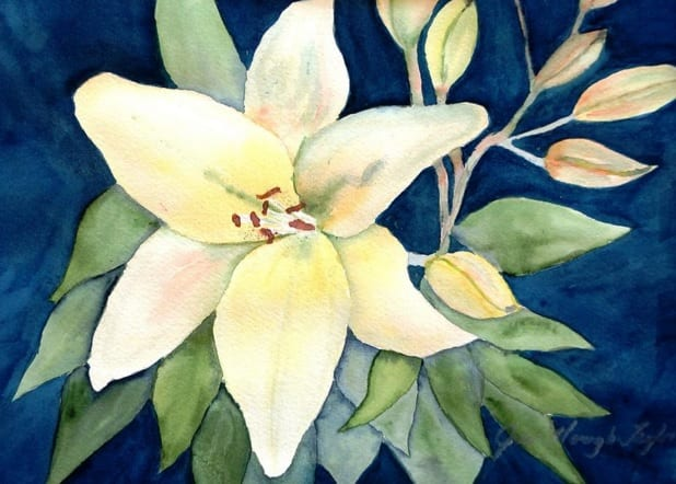White Lily by Jan Taylor, Wenaha Gallery guest artist
