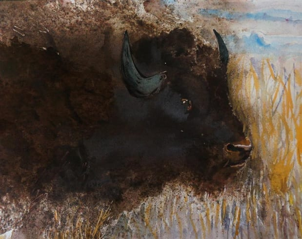 Yellowstone Lord by Jan Taylor, guest watercolor artist at Wenaha Gallery