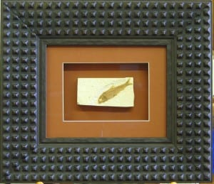 A fossil of a fish is one of the more unusual items that framer Lael Loyd has framed at Wenaha Gallery.