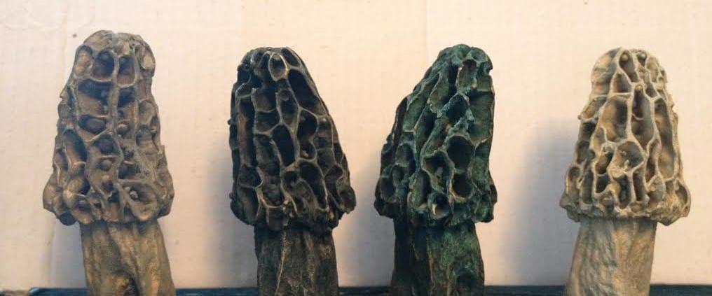 Morel Mushrooms in bronze by Wenaha Gallery artist Andy de la Maza
