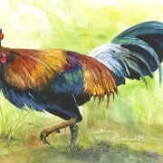 Hawaiian Chicken, original watercolor by Wenaha Gallery guest artist Pam Sharp