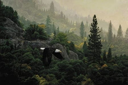 October Flight - Stephen Lyman