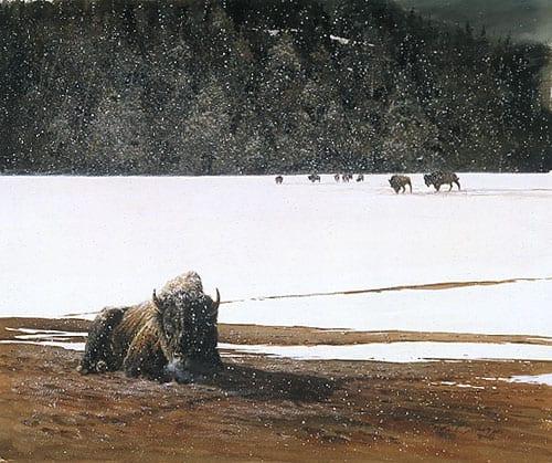 Winter's Chill - Mort Solberg