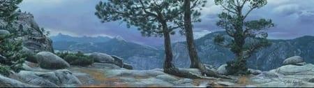 Yosemite Landscape - Stephen Lyman