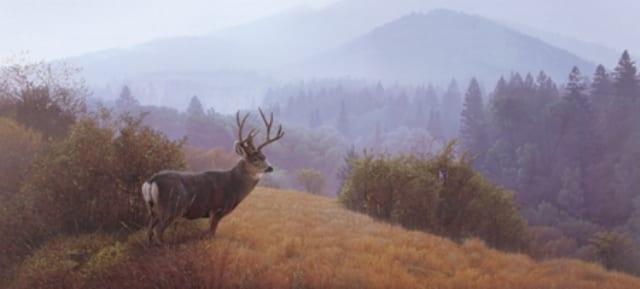 Autumn Haze - Daniel Smith