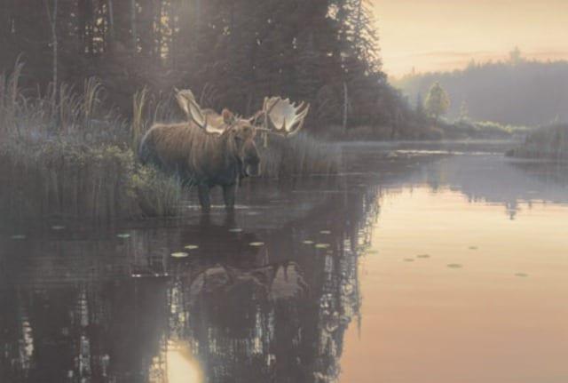 Backwater Bull - Daniel Smith