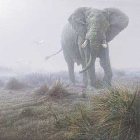 Denizen of the Mist - Daniel Smith