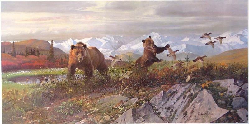 Bears Tundra Pond