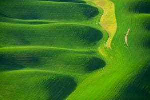 Fingers of the Jolly Green Giant, aerial photography by David Wyatt