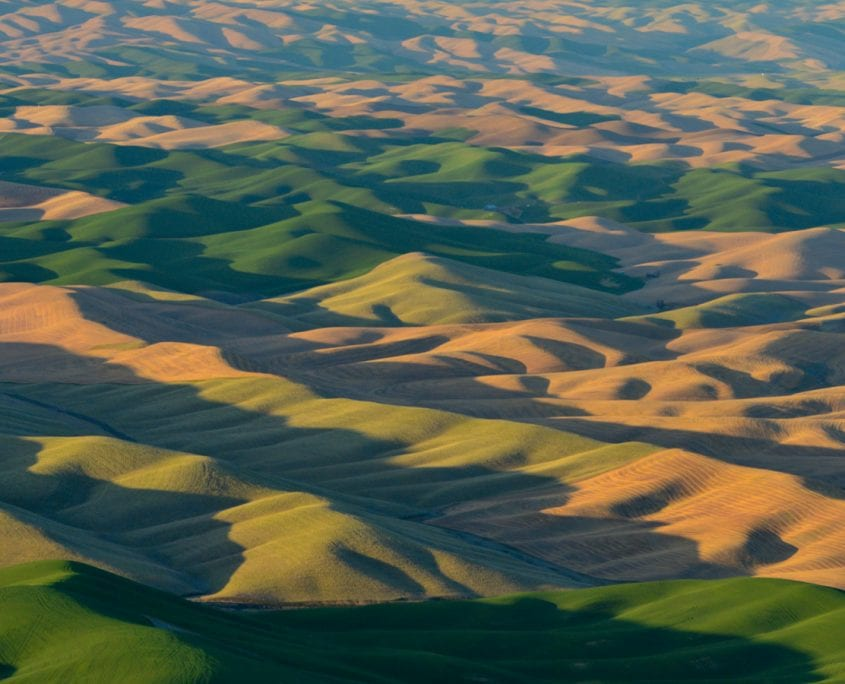 Infinite Palouse, aerial photograph by Wenaha Gallery guest artist, David Wyatt.