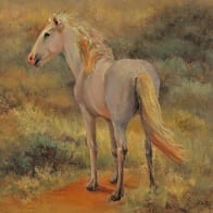 Wild stallion horse original oil painting by Pamela Claflin