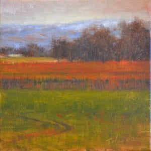 red vineyard river landscape todd telander walla walla