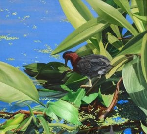 patience green plant with leaves david schatz acrylic painting