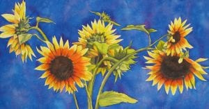 Sunflowers impressionist abstract bold colorful watercolor maja shaw