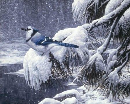 Twilight Snow - Stephen Lyman