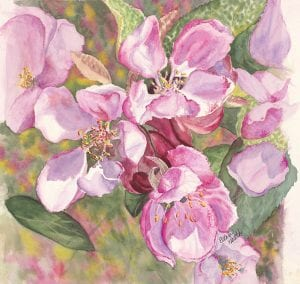 crab apple blossoms spring flowers simple living ellen heath dixie watercolor