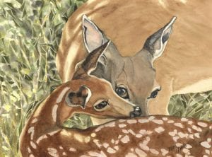 doe fawn wildlife animal spring simple living ellen heath dixie watercolor