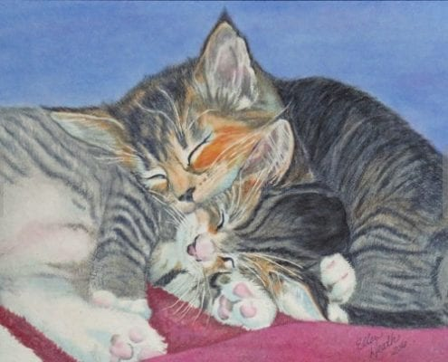 two kittens cats snuggling family pet ellen heath dixie watercolor painting