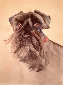 Gus Wonder Dog Terrier Pet portrait Deborah Bruce florist