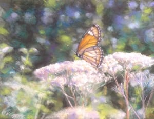butterfly insect country meadow flower pastel painting kirk campana