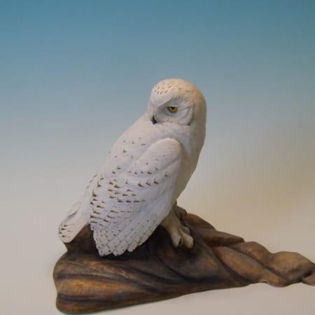 Snowy Owl (half size)
