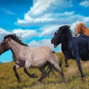 big sky mustangs dream old west montana horses tobias sauer