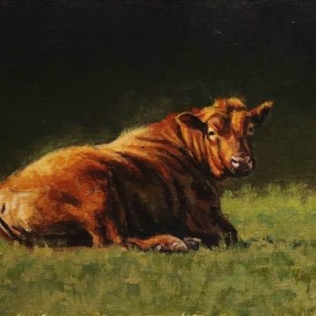 Herd Sire