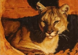 intense montana mountain lion puma wildlife cat western art tobias sauer