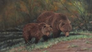 grizzly bear mama mother cub forest wildlife rislove