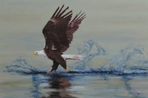 catch bald eagle flying talons wildlife rislove