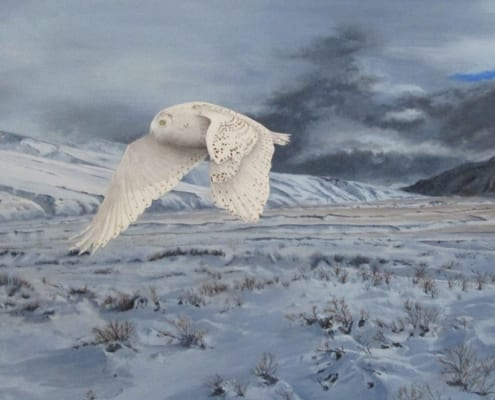 storm landscape snowy white owl flying wildlife keith rislove