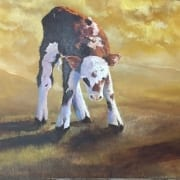cow baby calf farm animal david partridge oil painter artist