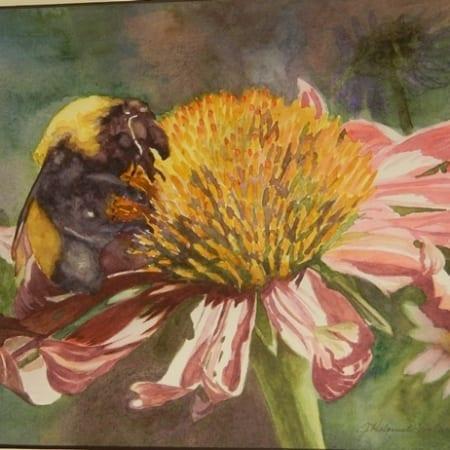 Exhibit Bee