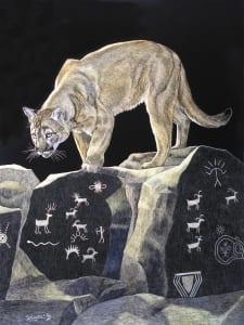 fire cat puma cougar wildlife animal sandra haynes scratchboard