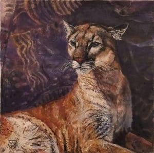 puma mountain lion cat feline panther parowan jan fontecchio wildlife