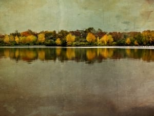 bateman island fall autumn columbia river richter