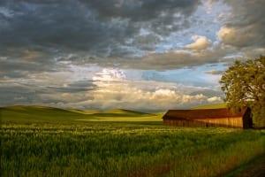 country meadow landscape barn clouds sky nancy richter