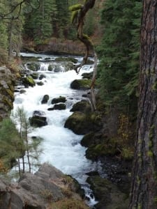 river spring rush whitewater landscape wilderness forest doug paulson