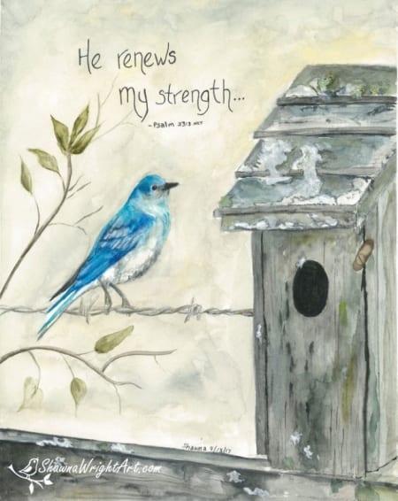 Renewed Strength