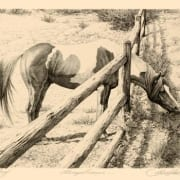 always greener wild horse fence grazing bev doolittle art
